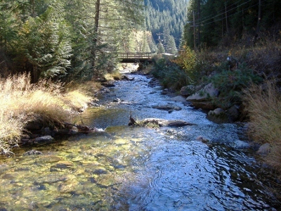 Ninemile Creek above mouth near Wallace, ID - USGS file photo
