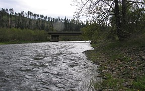 St. Maries River near Santa, ID - USGS file photo