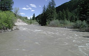 Greys River above Reservoir near Alpine, WY - USGS file photo