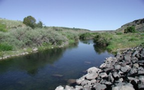 Willow Creek near Ririe, ID - USGS file photo