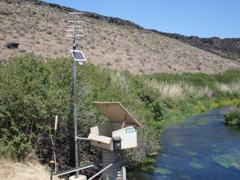 Briggs Spring at head near Buhl, ID - USGS file photo