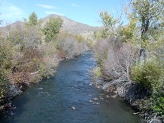 Little Wood River near Carey, ID - USGS file photo