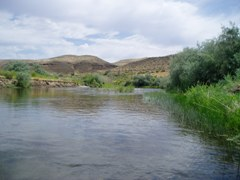 Bruneau River near Hot Spring, ID - USGS file photo