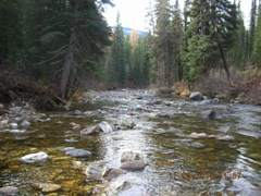 Lake fork Payette River above Jumbo Creek near McCall, ID - USGS file photo downstream