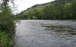 Clearwater River at Stites, ID - USGS file photo