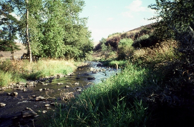 Lapwai Creek near Lapwai, ID - USGS file photo